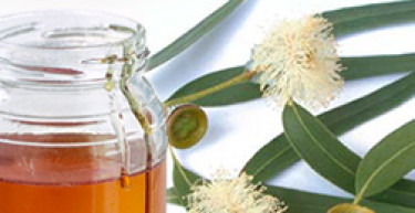 Tosse e raffreddore? Il nostro miele è la soluzione naturale