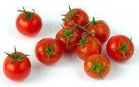 pomodoro-ciliegino
